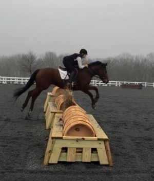 Cross Country Schooling photo