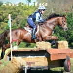Horse and Rider Training
