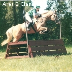 Instruction with USEA/USDF Certified Instructor