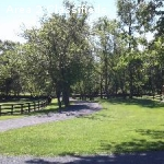 Middleburg- Small, Friendly, All Disciplines Welcome