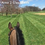 Sport Horse Training & Boarding Facility