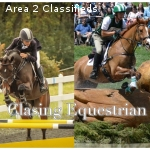 Working Student Position with Two Advanced Level Eventers