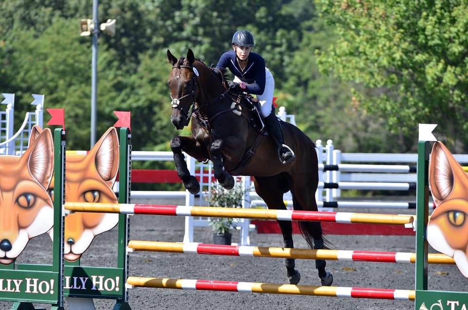 2019 Preliminary Junior/Young Rider Champion