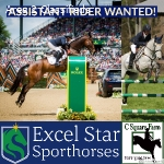 Assistant Rider Wanted!