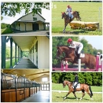 Board Available at Lovely Eventing Barn