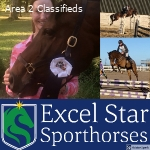 Join the Excel Star Sporthorses family!