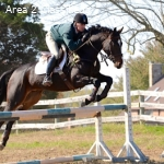 Training Openings With Stephen S. Bradley Eventing!