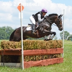 Ultimate Eventing Schoolmaster Available For Onsite Lease