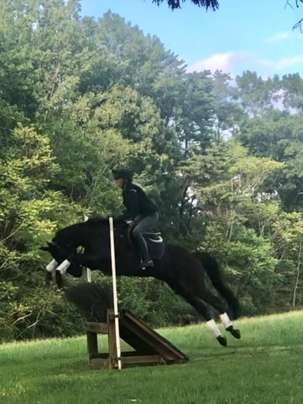 Maggie Proffitt riding Gretel Mangigian's horse Jib(Beth's Moonsail)
