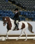 PL-Cha-Cha-dressage-at-VHC
